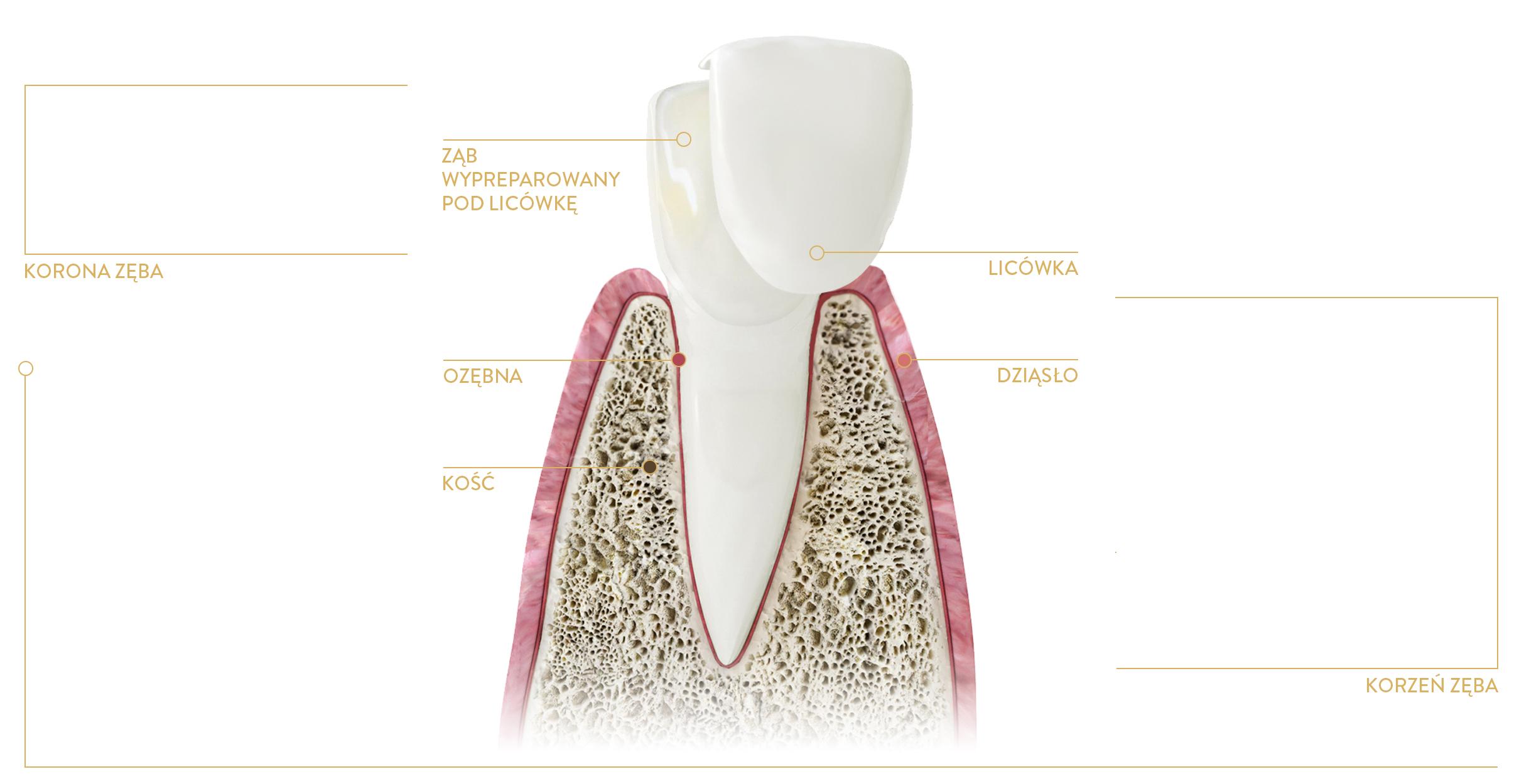 kraków stomatologia estetyczna